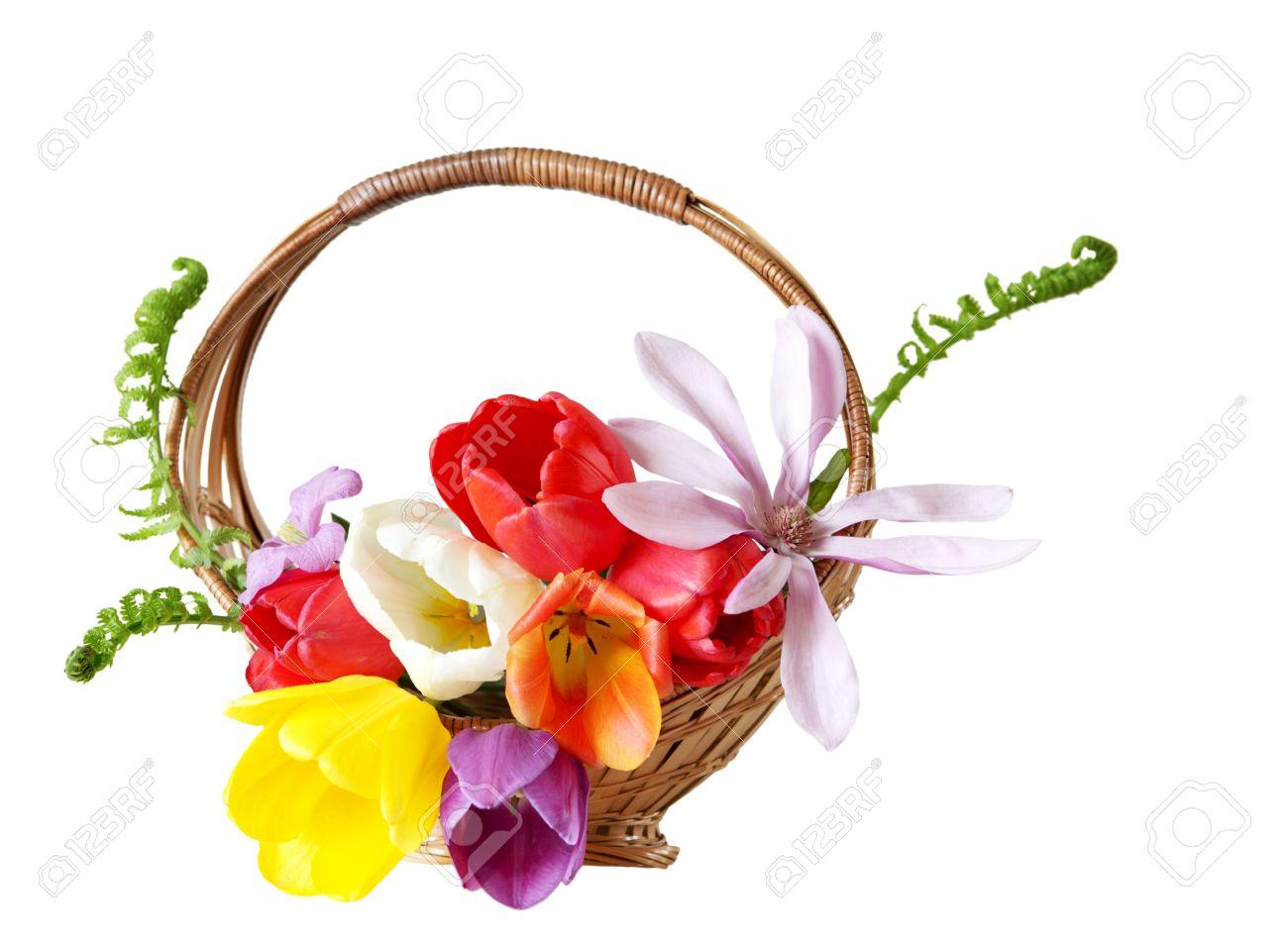 Beautiful fresh flower basket isolated on white stock photo picture beautiful fresh flower basket isolated on white stock photo 4823633 mightylinksfo