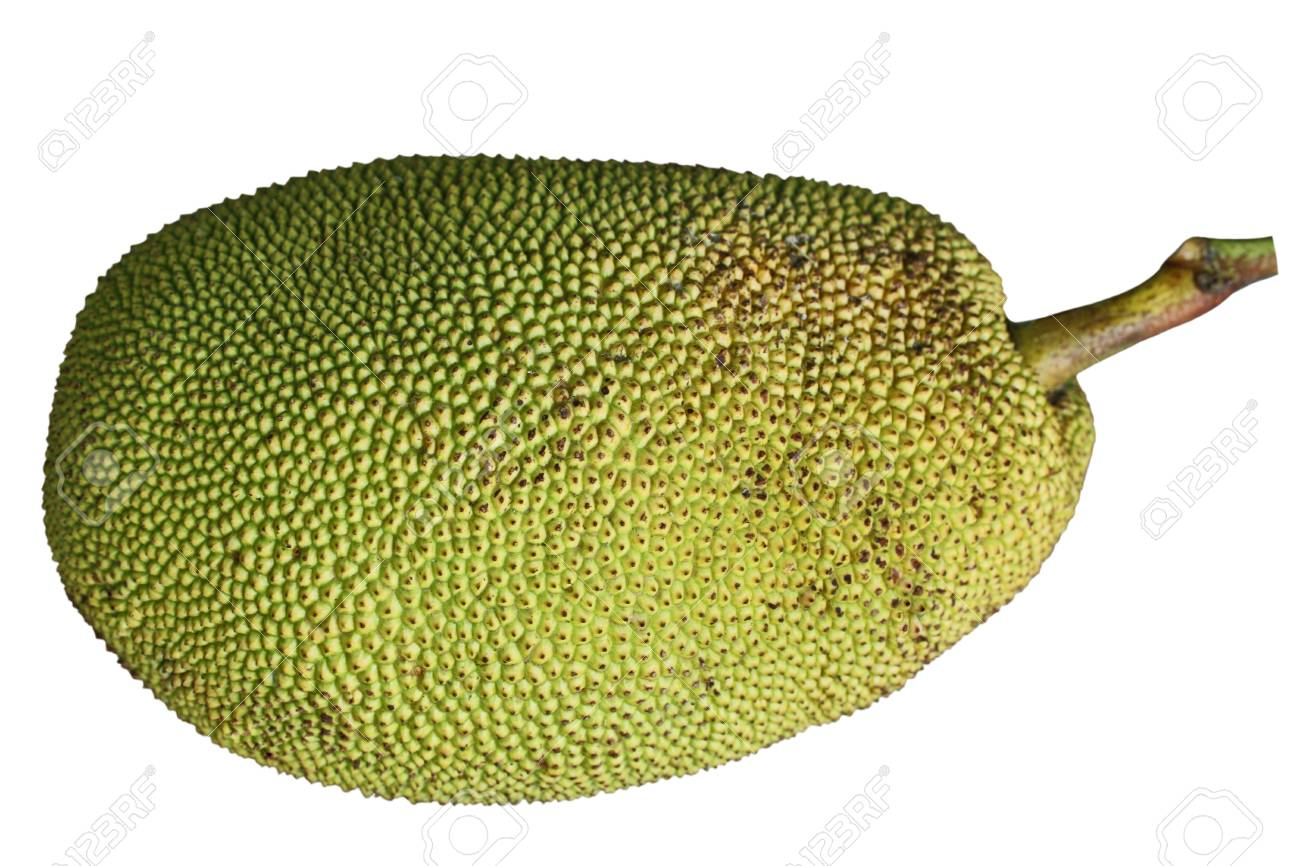 Show Pictures Of Jackfruit