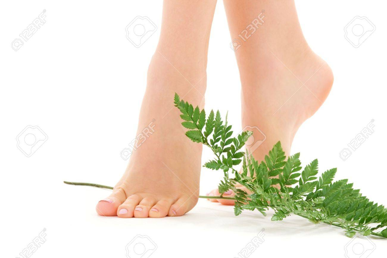picture of female feet with green leaf over white Stock Photo - 4670102