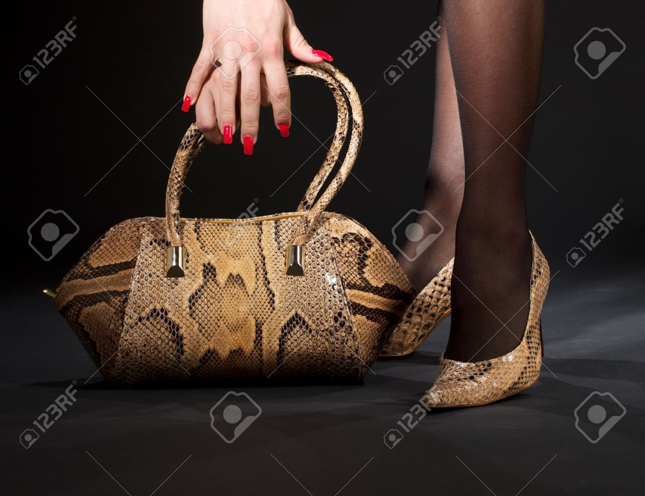 long legs in snakeskin shoes with handbag over black Stock Photo - 5197193