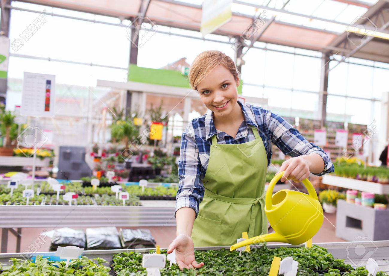 people gardening and profession concept happy woman or gardener with watering can and seedling in greenhouse