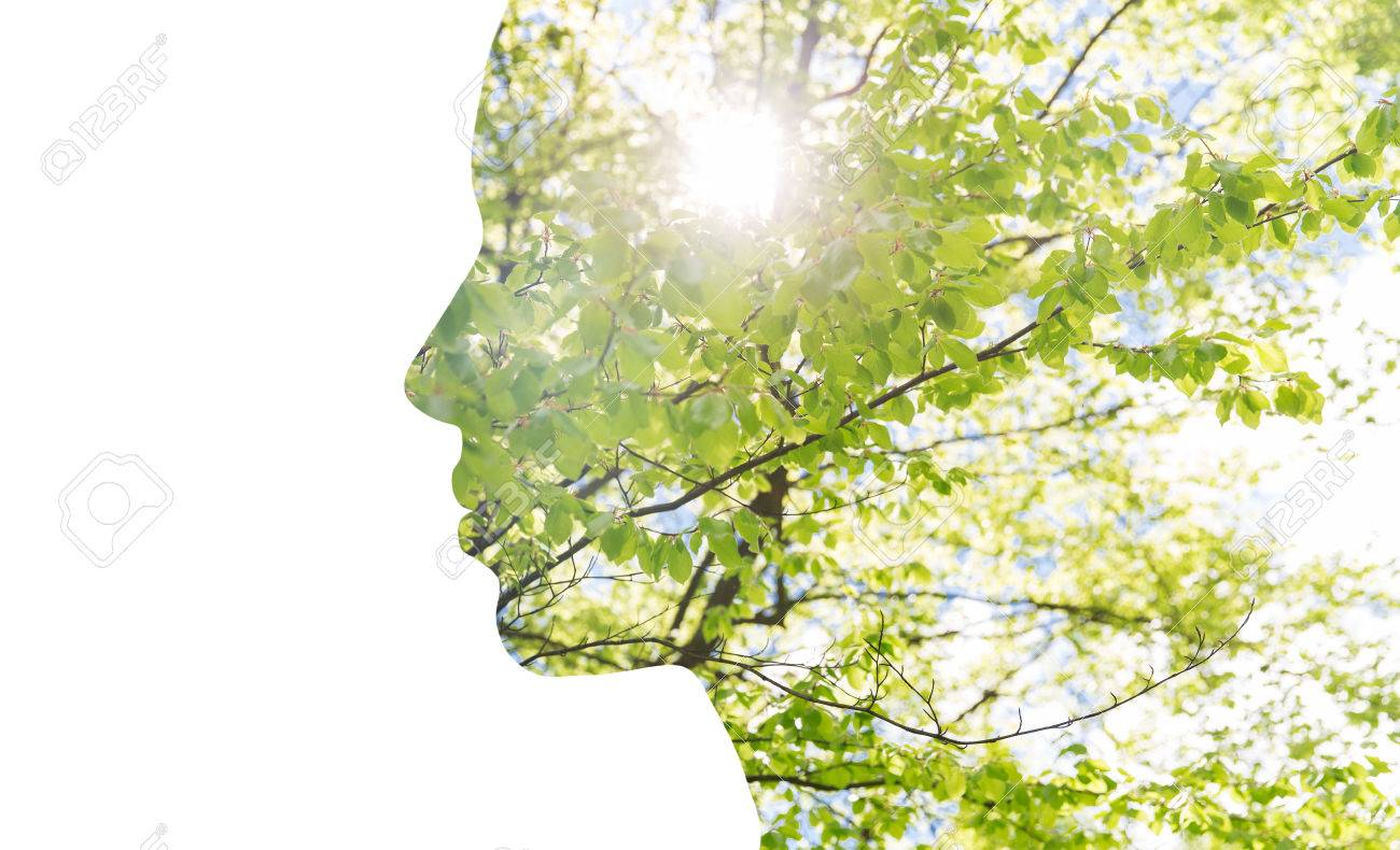 beauty, nature, travel and ecology concept - portrait of woman profile with green tree foliage with double exposure effect - 64663441