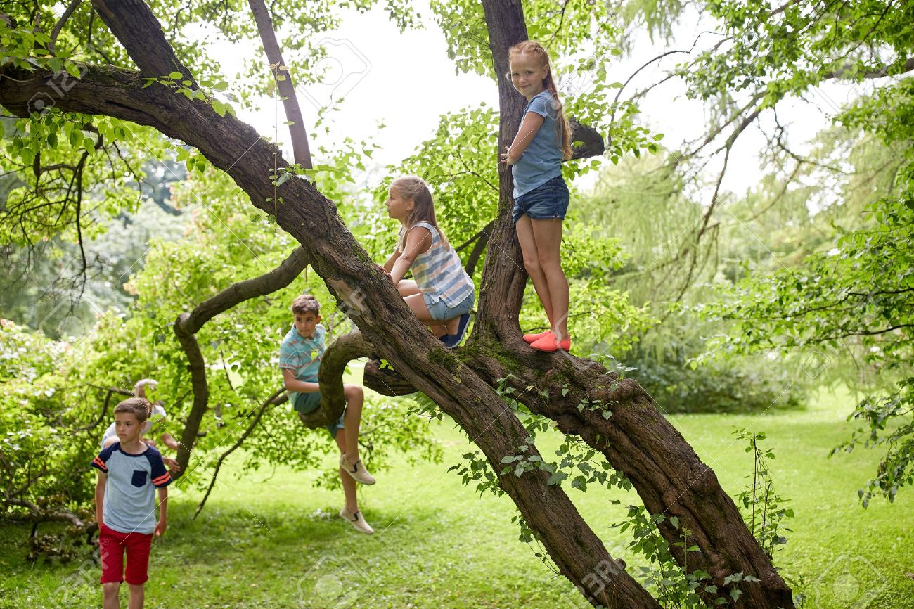 friendship, childhood, leisure and people concept - group of happy kids or friends climbing up tree and having fun in summer park - 64664164