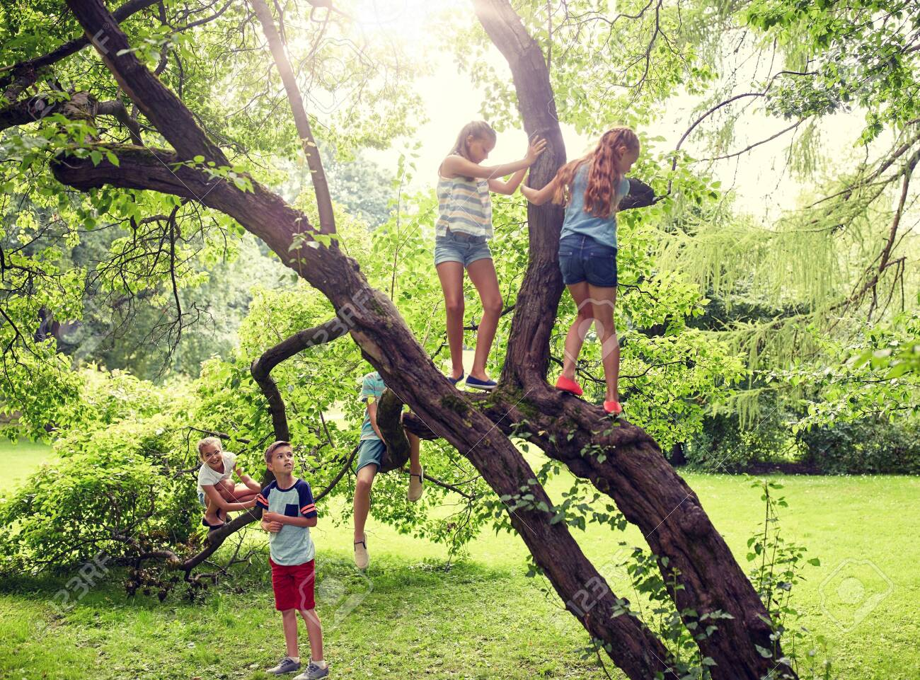 friendship, childhood, leisure and people concept - group of happy kids or friends climbing up tree and having fun in summer park - 139023567