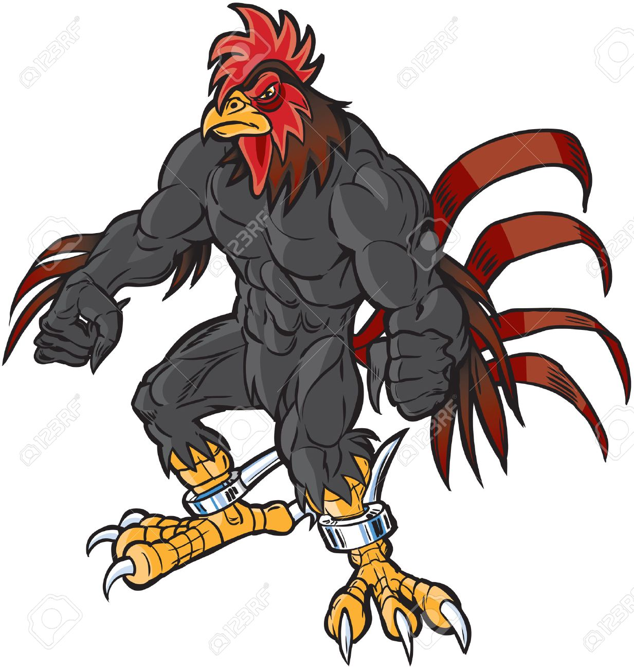 111 gamecock cliparts stock vector and royalty free gamecock rh 123rf com carolina gamecock clipart gamecock clipart free