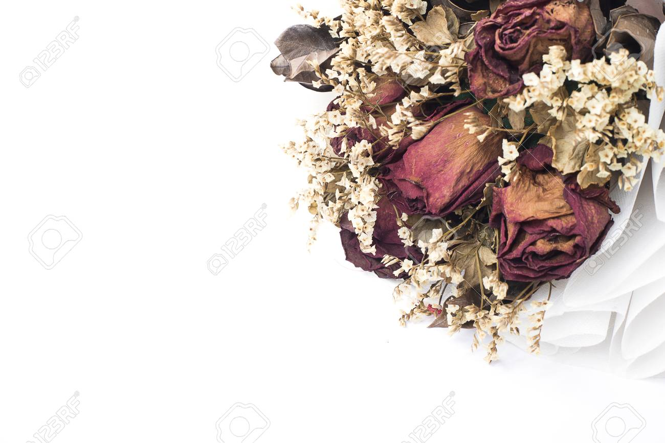 Part Of Dry Flower Bouquet On White Background, Selective Focus ...