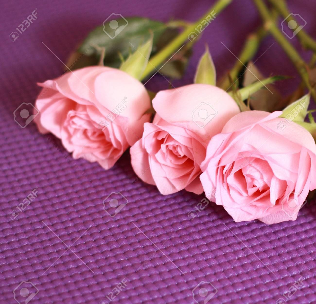 Mazzo Di Fiori Sinonimo.Immagini Stock Fresco Rosa Rose Close Up Rose E Sinonimo Di