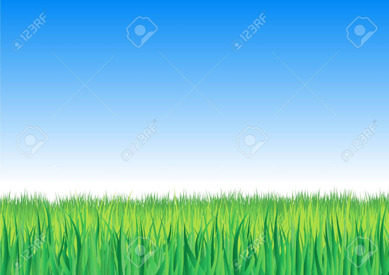 Vector illustration of detailed grass leaves on a gradient horizon sky Stock Vector - 2515485