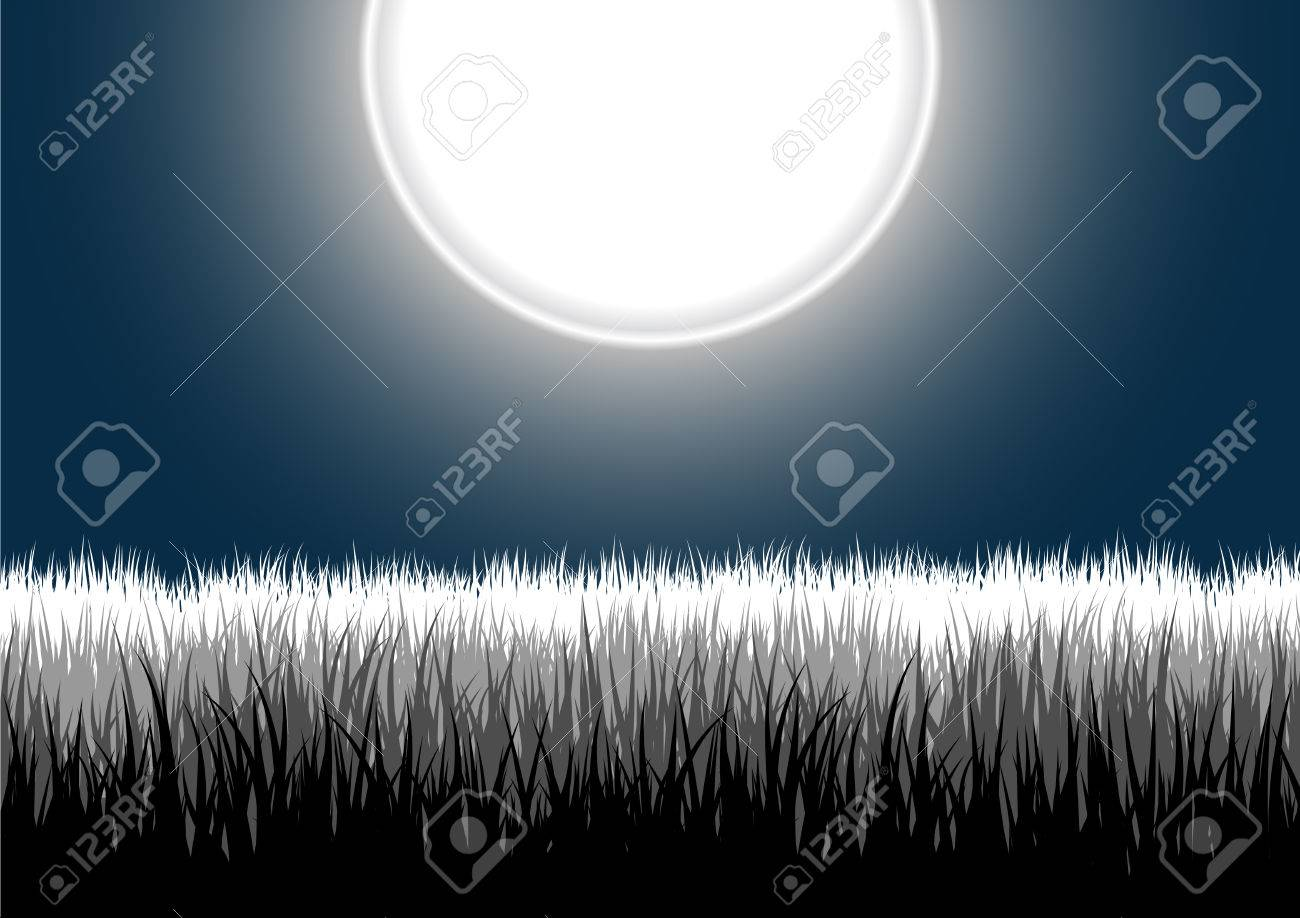 Vector illustration of detailed grass leaves on a gradient night moon sky Stock Vector - 2515484
