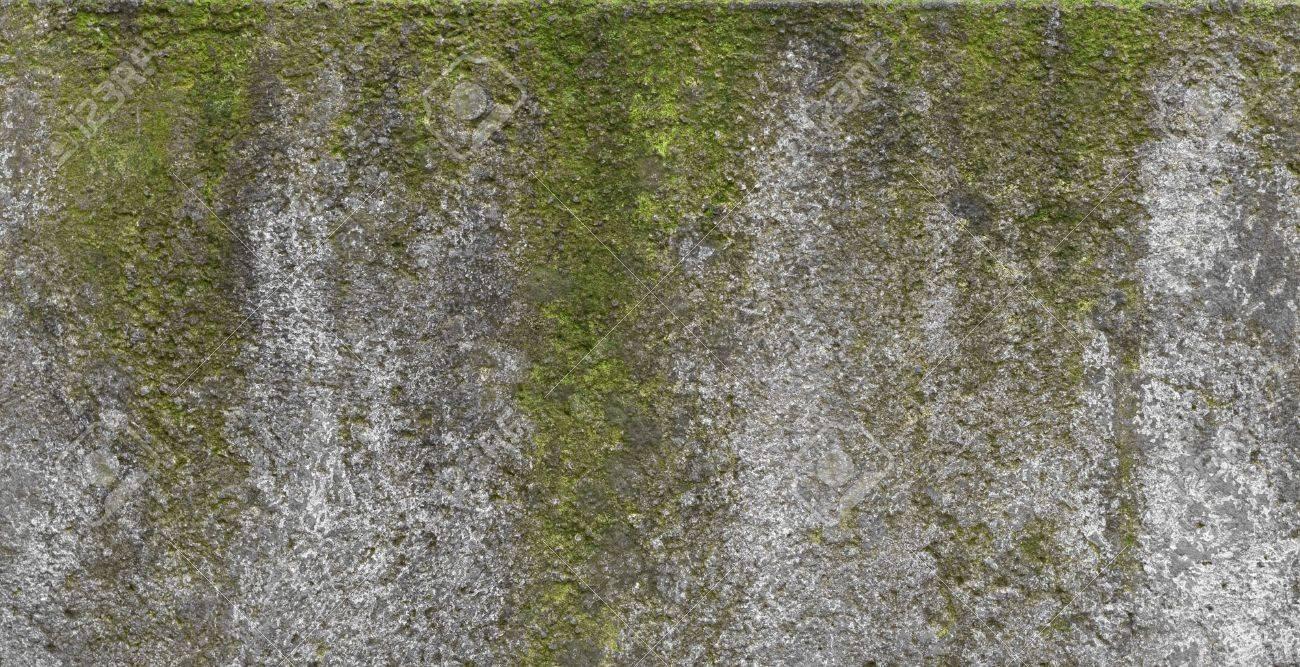 Nasse Wand Im Alter Von Textur Mit Grunen Flecken Lizenzfreie Fotos