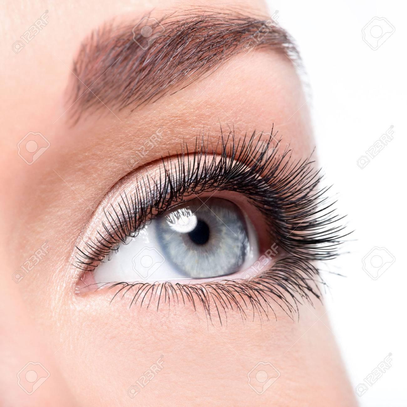 Beauty Female Eye With Curl Long False Eyelashes - Macro Shot ...