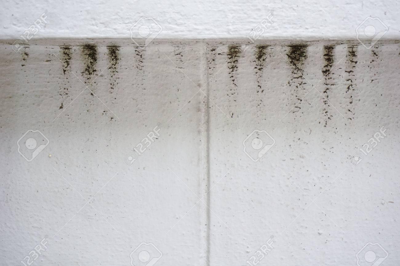 L\'eau Et Les Dégâts De La Pluie Tache Sur Un Mur Blanc Banque D ...