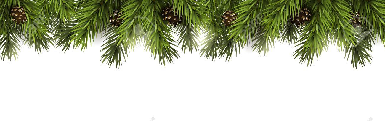 Christmas border with fir branches and pine cones on white background - 89953130