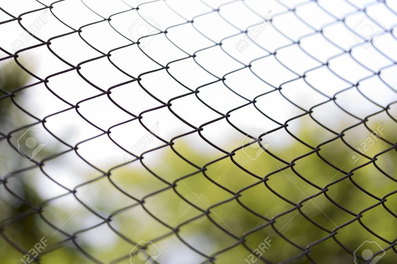 Fantastic Green Chicken Wire Sketch - Wiring Diagram Ideas ...