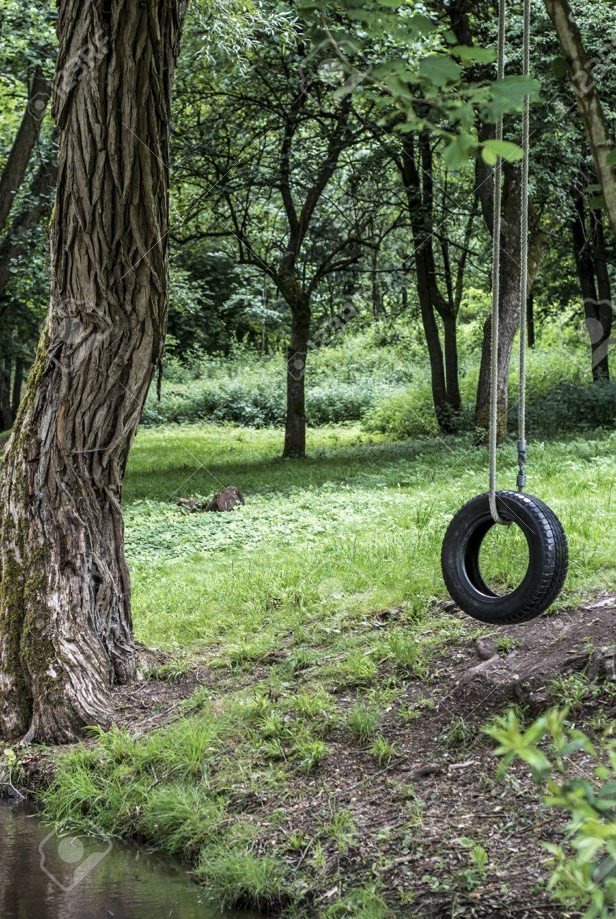 Car Tire Used As Swing On Tree Forest Near Creek Stream Concept Stock Photo Picture And Royalty Free Image Image 82357422