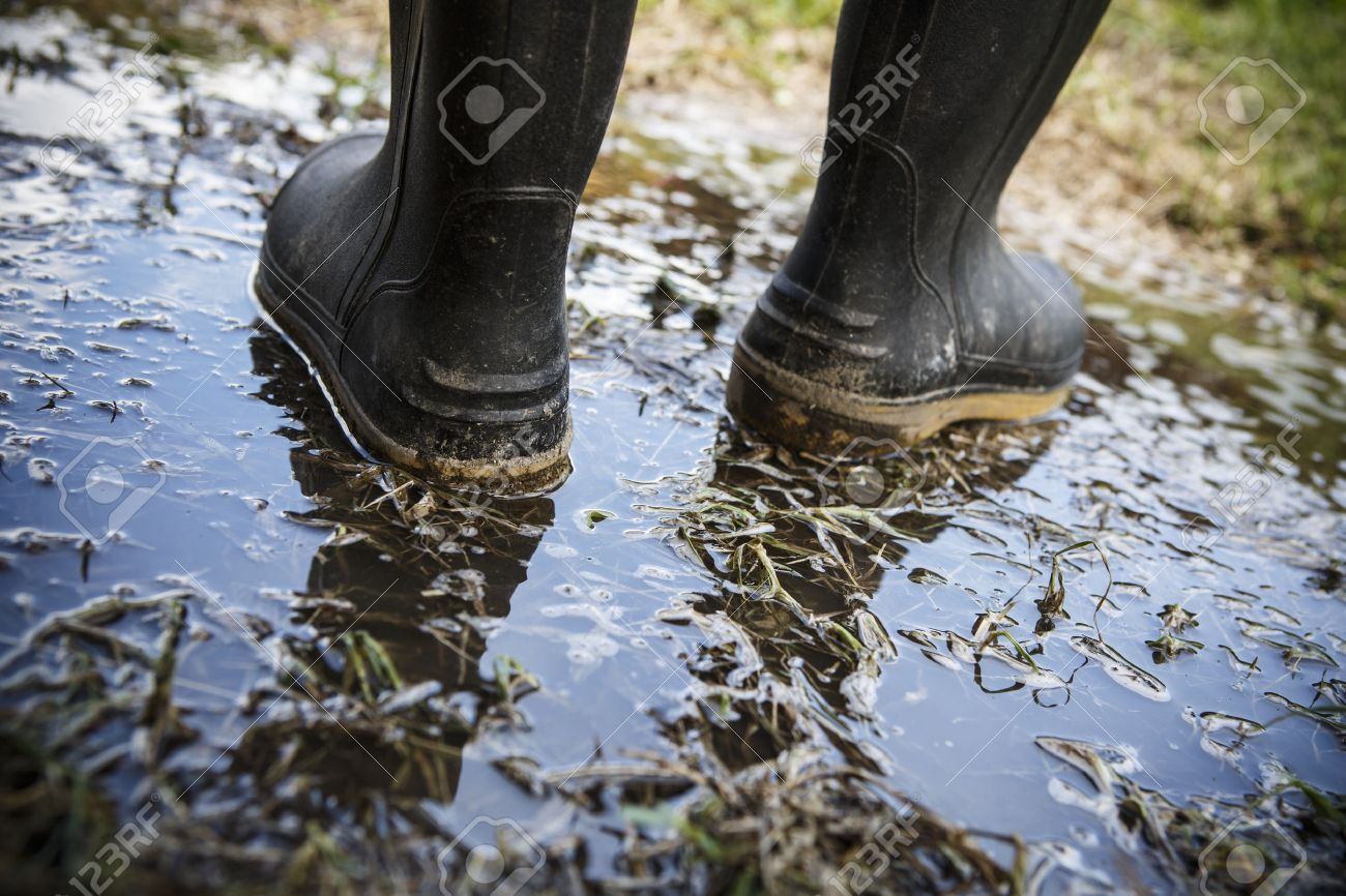 Dirty Galoshes Rubber Boots In Puddles