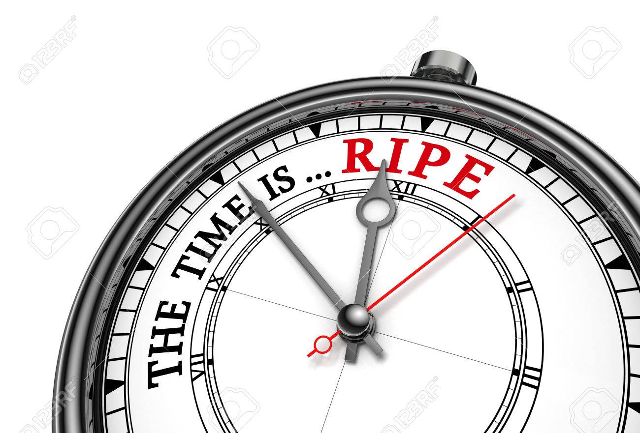 Image result for the time was ripe