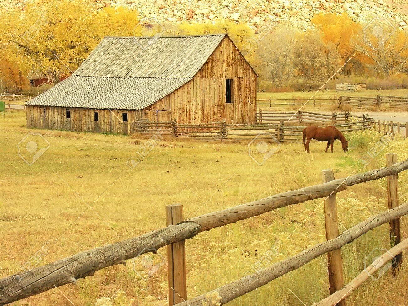 Gifford Barn, Capitol Reef National Park, Utah, USA Stock Photo - 19107720