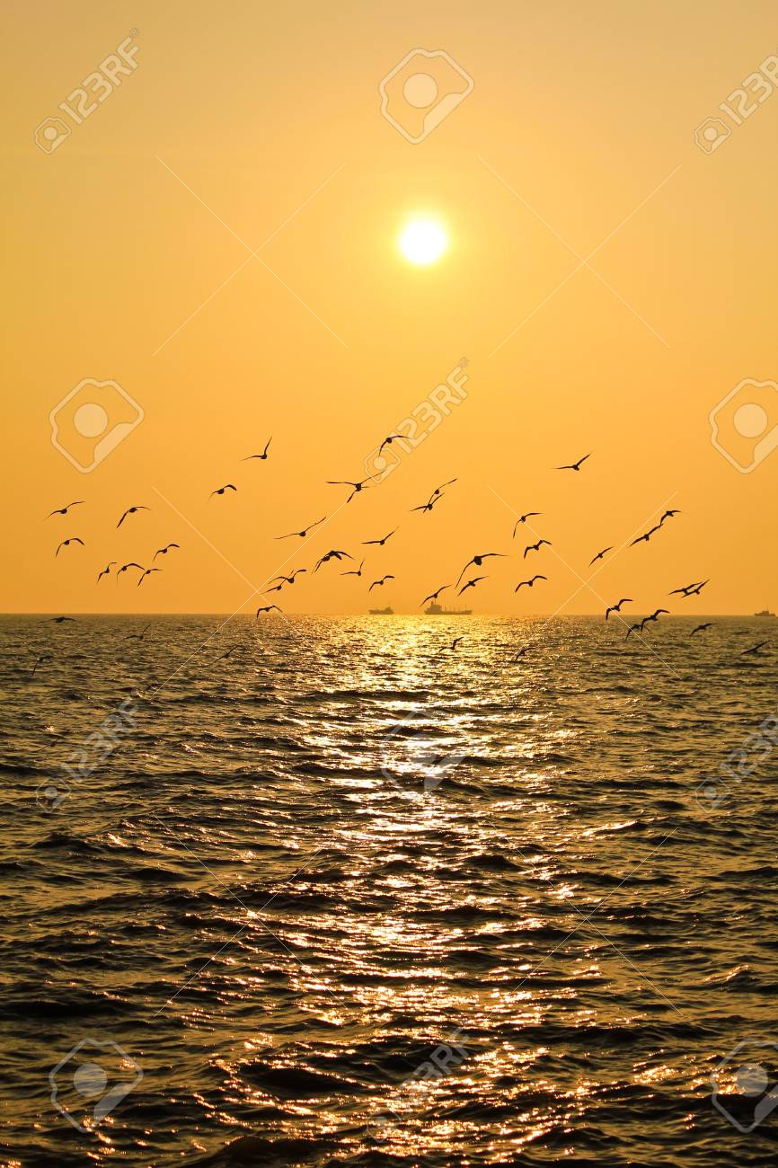 Reflexion of light of the sunset. Stock Photo - 12848043