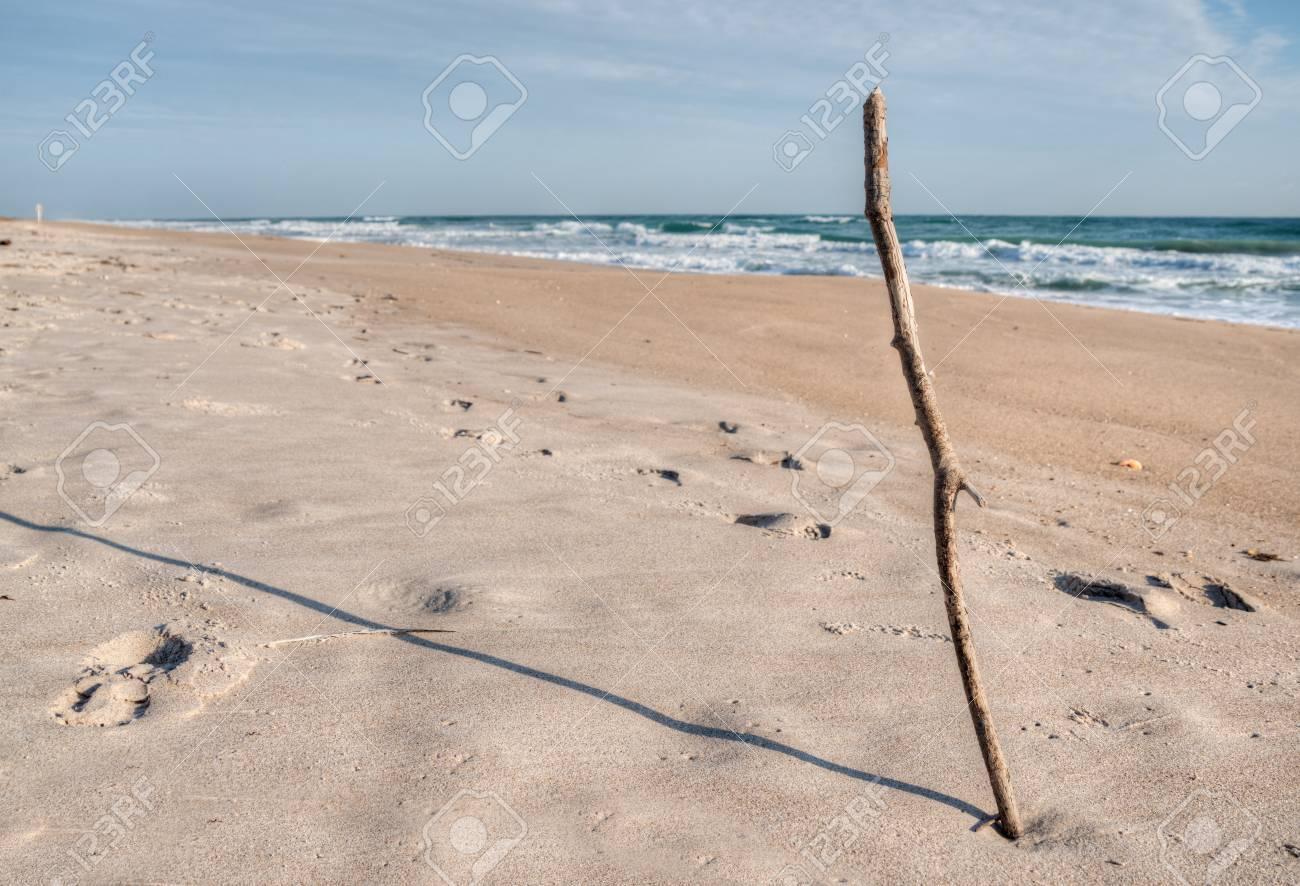 Canaveral National Seashore in Florida Stock Photo - 18445483