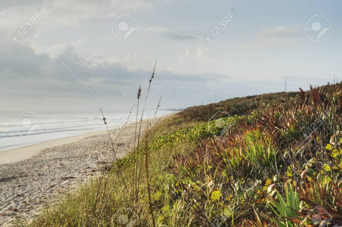 Canaveral National Seashore in Florida Stock Photo - 18445482