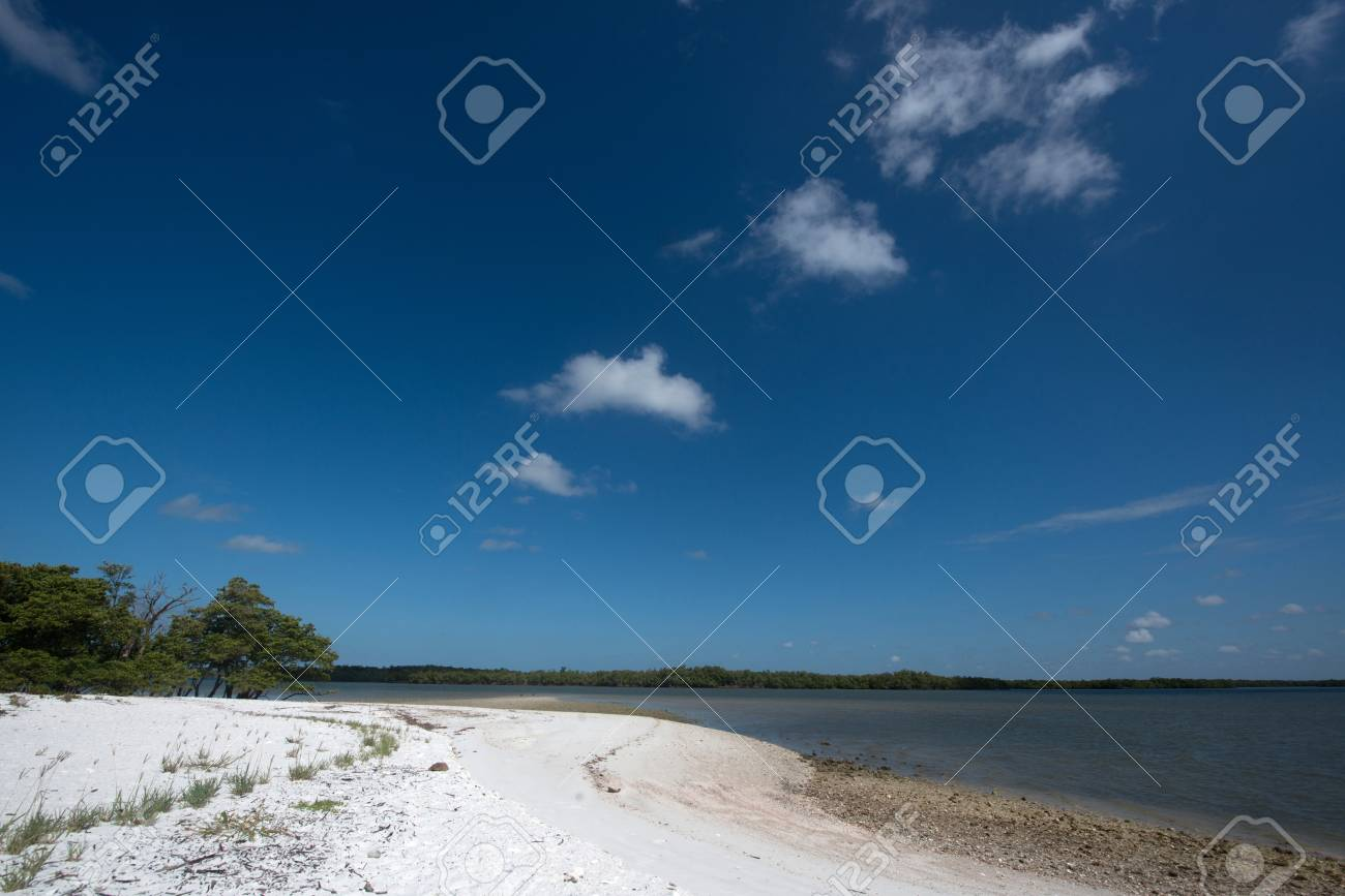 Tiger Key in Ten Thousand Islands Stock Photo - 19502521