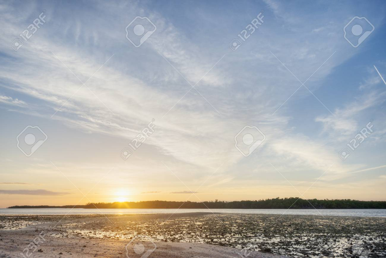 Sunrise in the Everglades Stock Photo - 19502524
