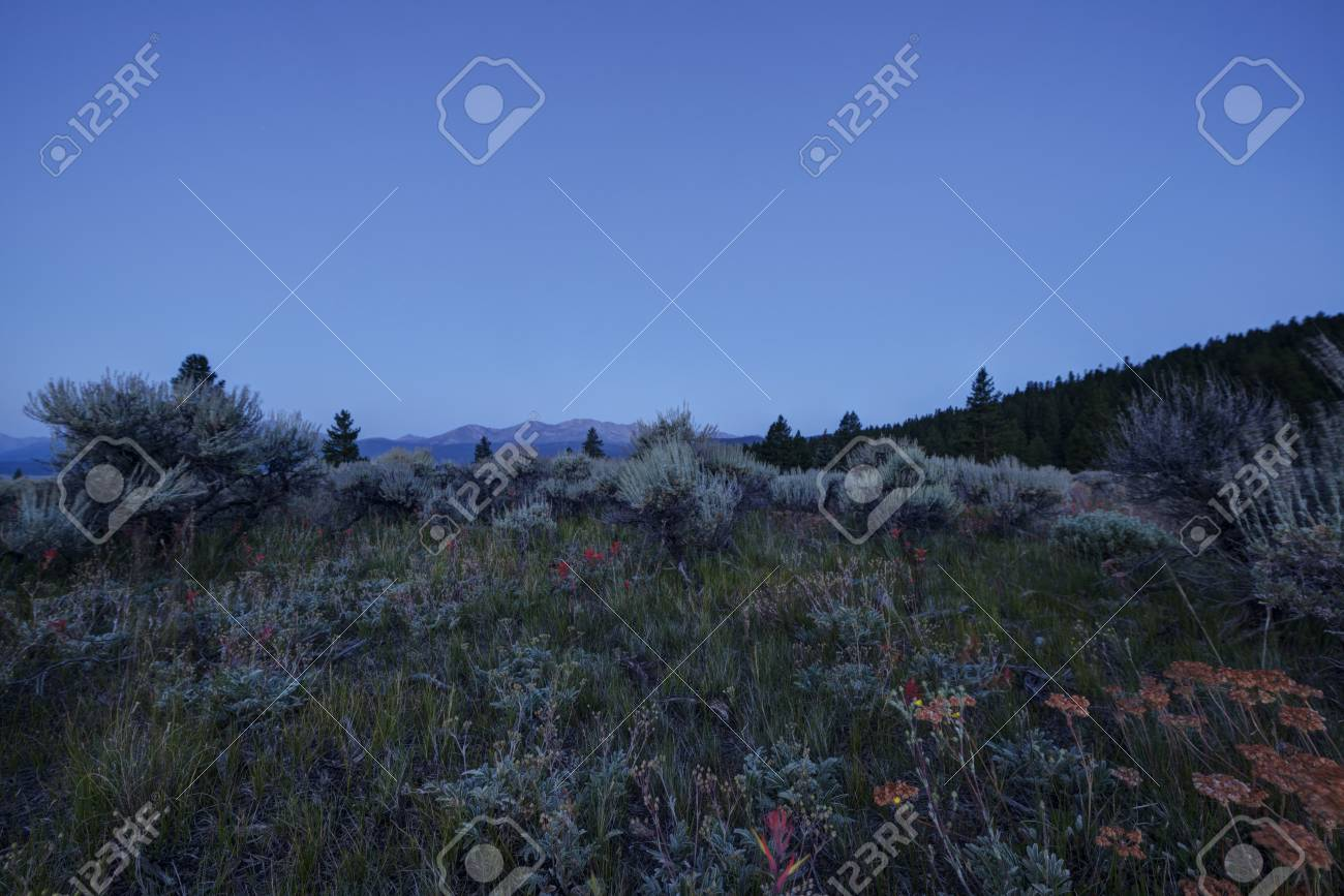 Early Morning in the Rocky Mountains Stock Photo - 21889472