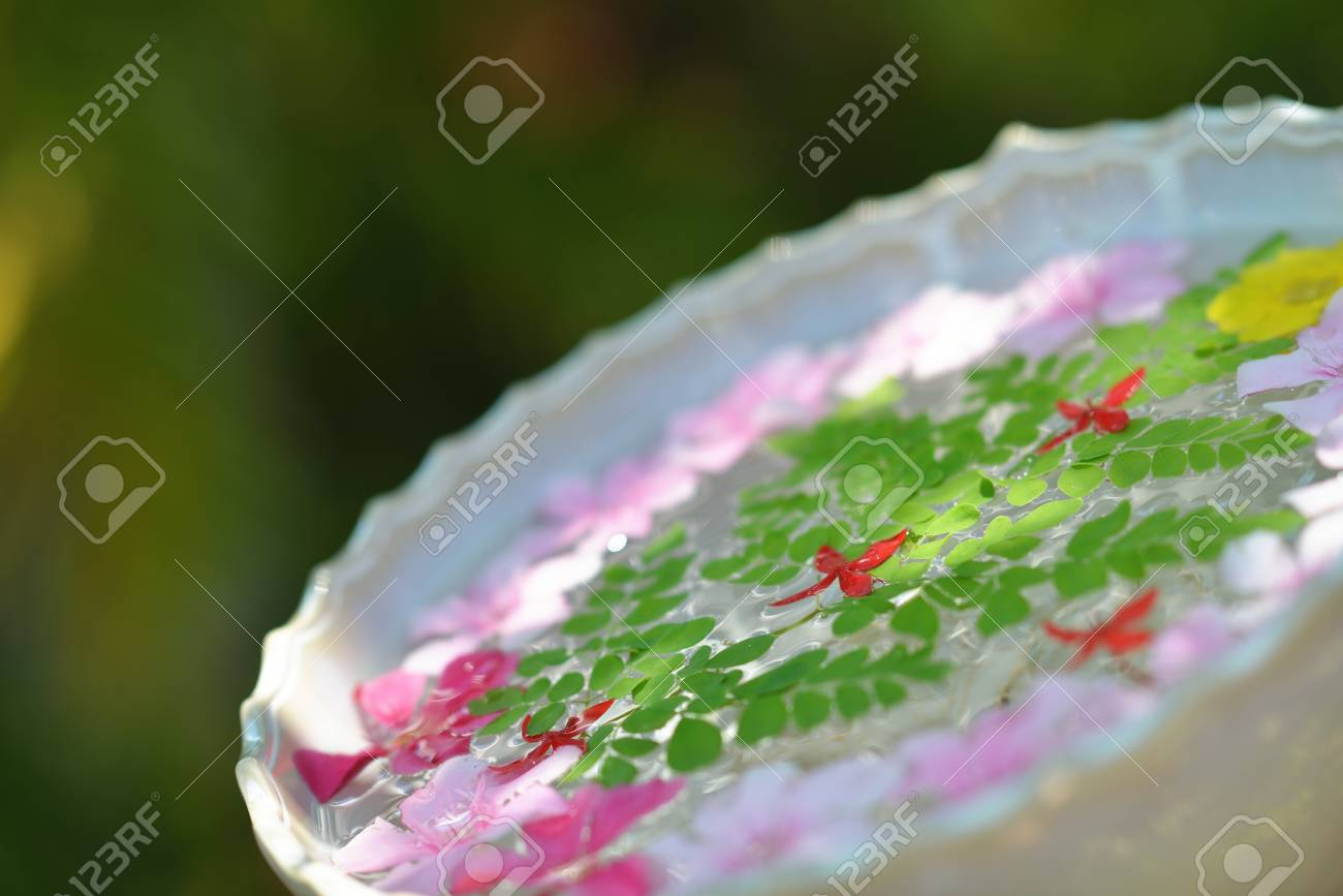 Immagini Stock Tazza Di Acqua Con Bellissimi Fiori Una Varieta Di Colori Di Sfondo In Salute E Bellezza Centro Benessere Image 20580500