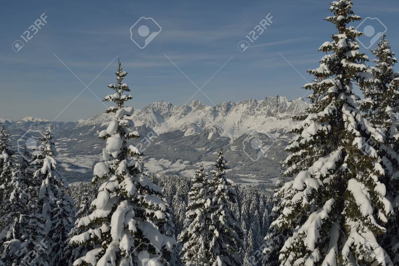 winter nature landscape  mountaint  with tree and fresh snow Stock Photo - 21908174