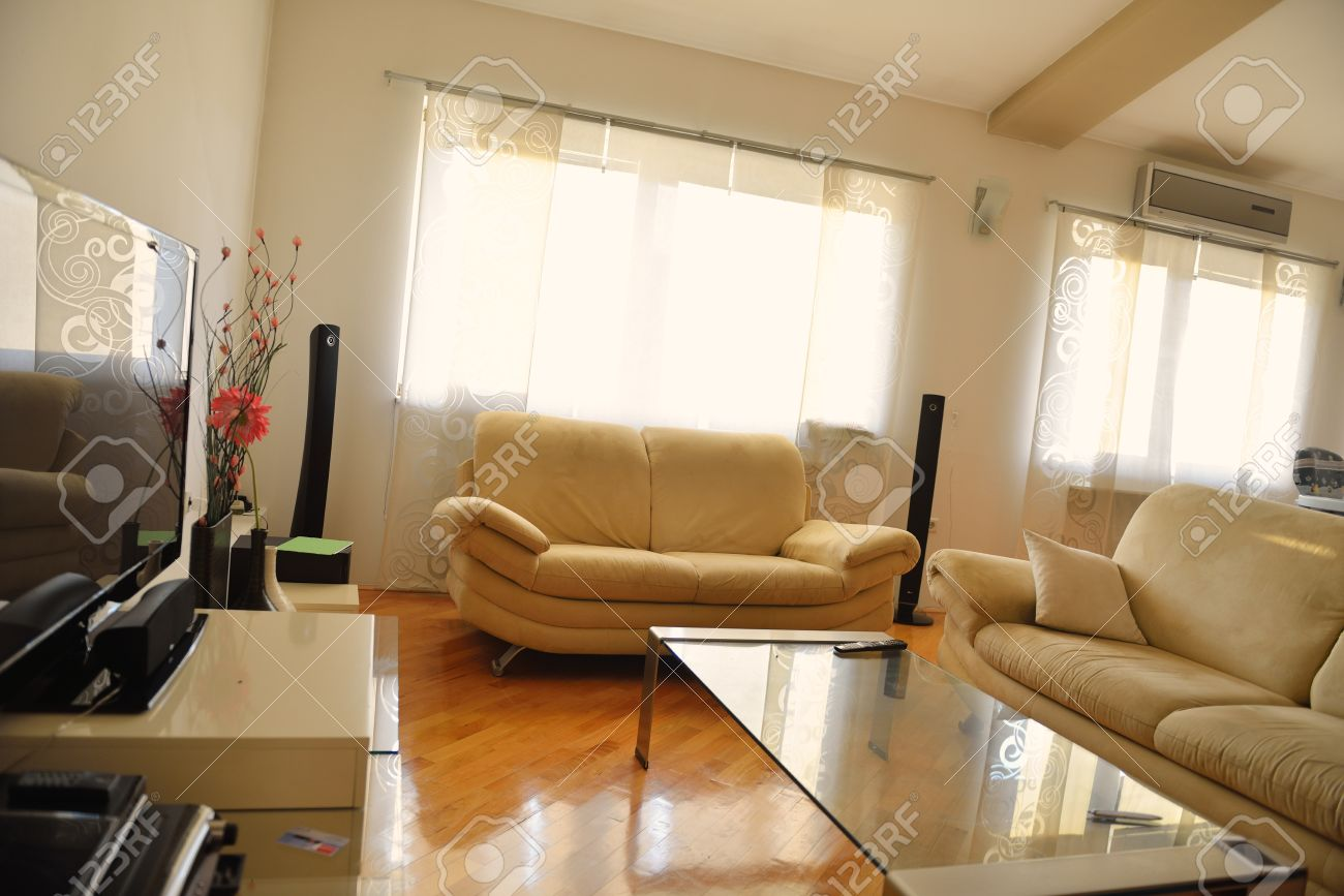 Modern living room with couches and TV