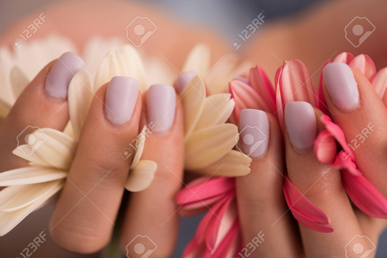 Beauty delicate woman hands with manicure holding flower close beauty delicate woman hands with manicure holding flower close up stock photo 73533307 izmirmasajfo