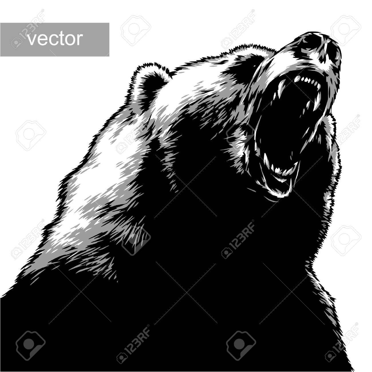 Grizzly Bear Cliparts Stock Vector And Royalty Free Grizzly