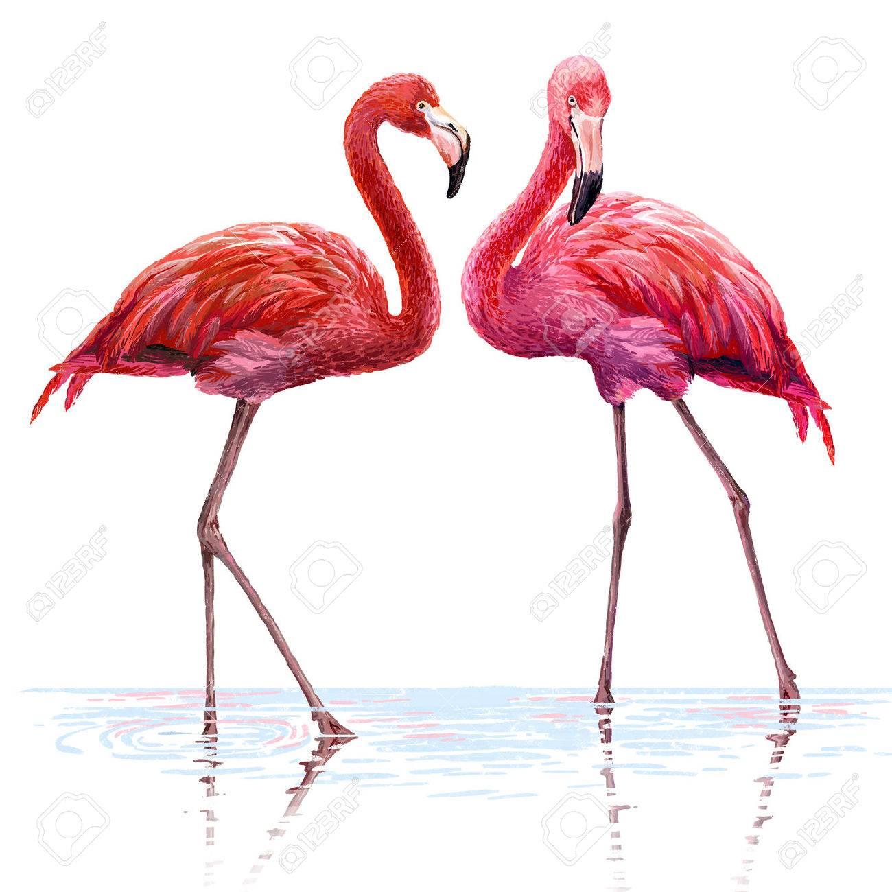 カラフルなピンクのフラミンゴ。...