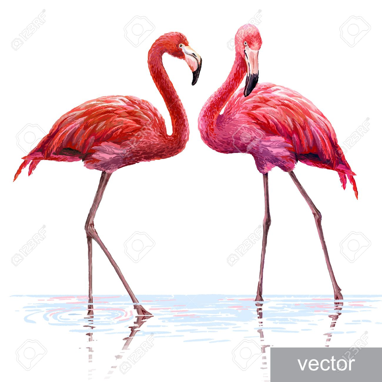 14,254 Flamingo Cliparts, Stock Vector And Royalty Free Flamingo ...