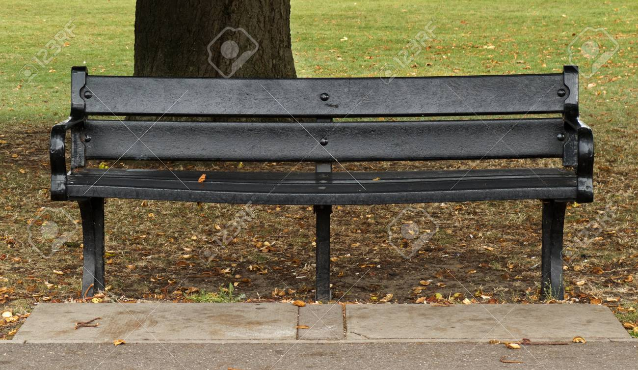 Pleasing Black Park Bench In Front Of Tree In Autumn Creativecarmelina Interior Chair Design Creativecarmelinacom
