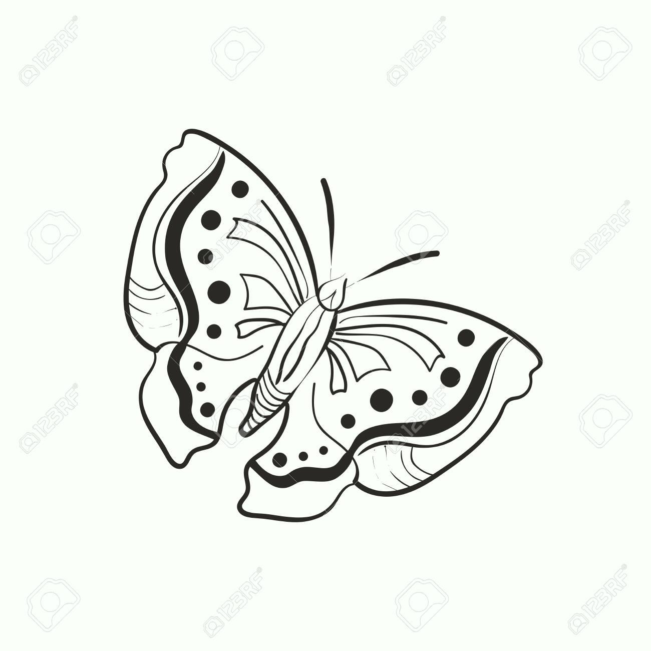 塗り絵は白い背景で隔離の落書き蝶のイラストのイラスト素材ベクタ