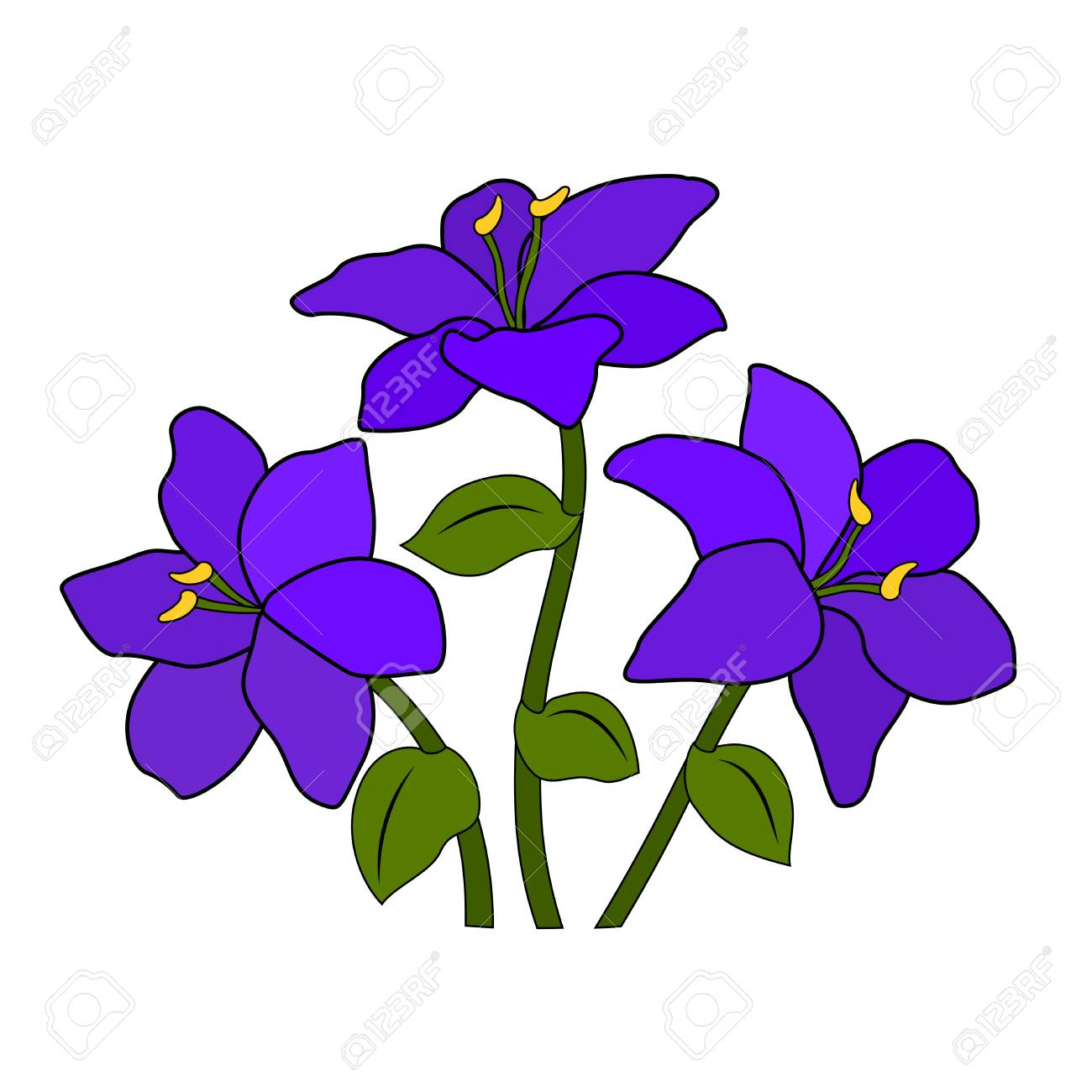 A Bouquet Or A Bed Of Purple Lilac Violet Flowers Six Petals Royalty Free Cliparts Vectors And Stock Illustration Image 112340642