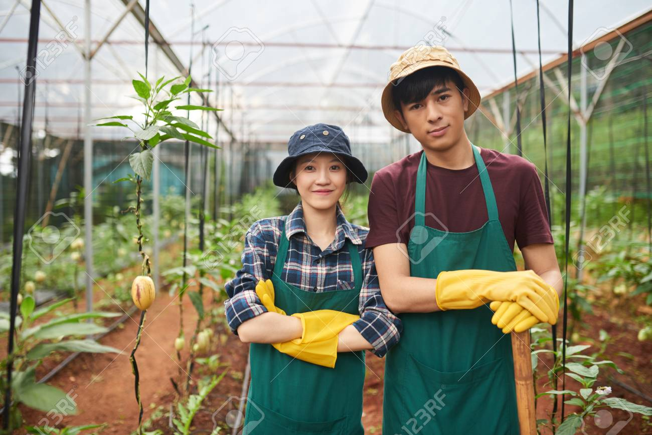 Cheerful young farm workers - 93896651