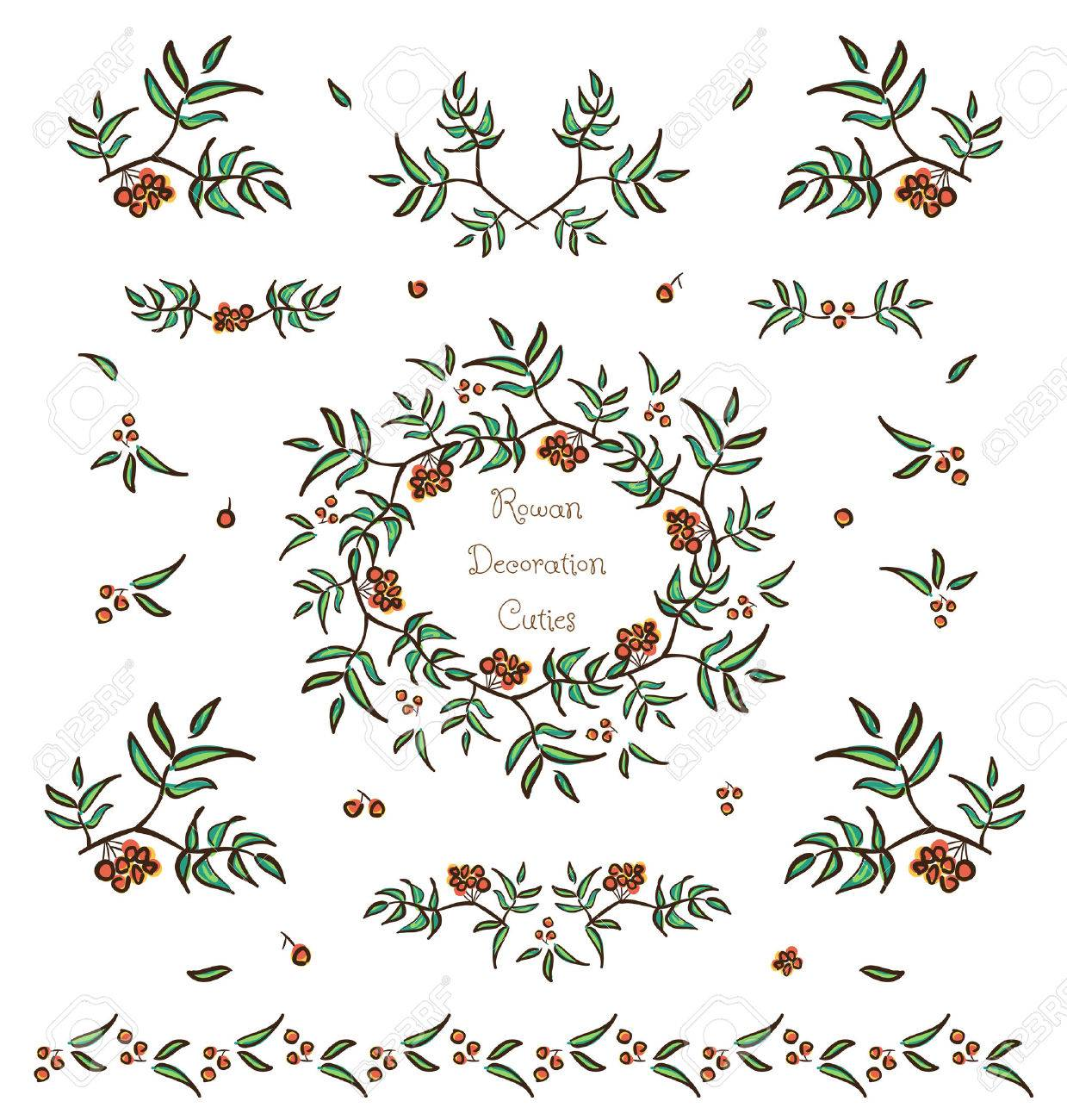 Vector set of cute tree twigs decorative elements, borders and vignettes made of rowan tree berries and leaves for cards and design - 35706064