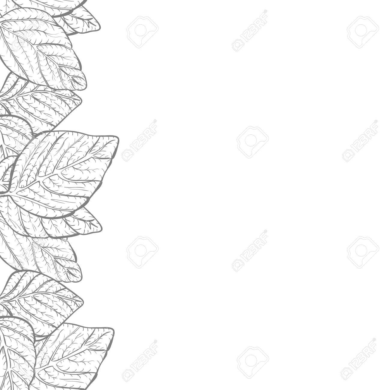 vector background nature foliage leaves border frame with copy royalty free cliparts vectors and stock illustration image 45337943 123rf com
