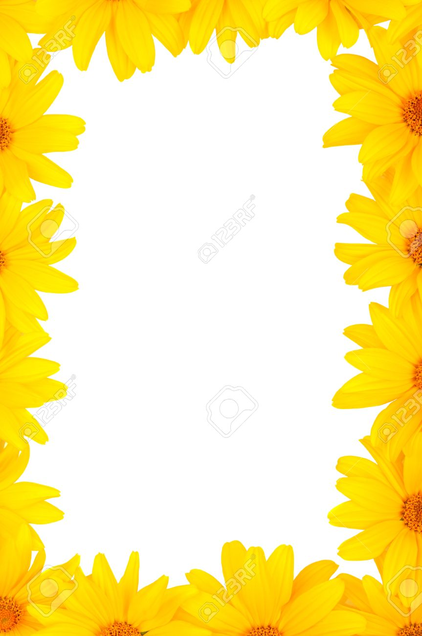 The Beautiful Frame Of Yellow Flowers Stock Photo, Picture And ...