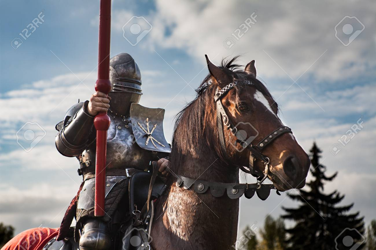 Image result for knight horse