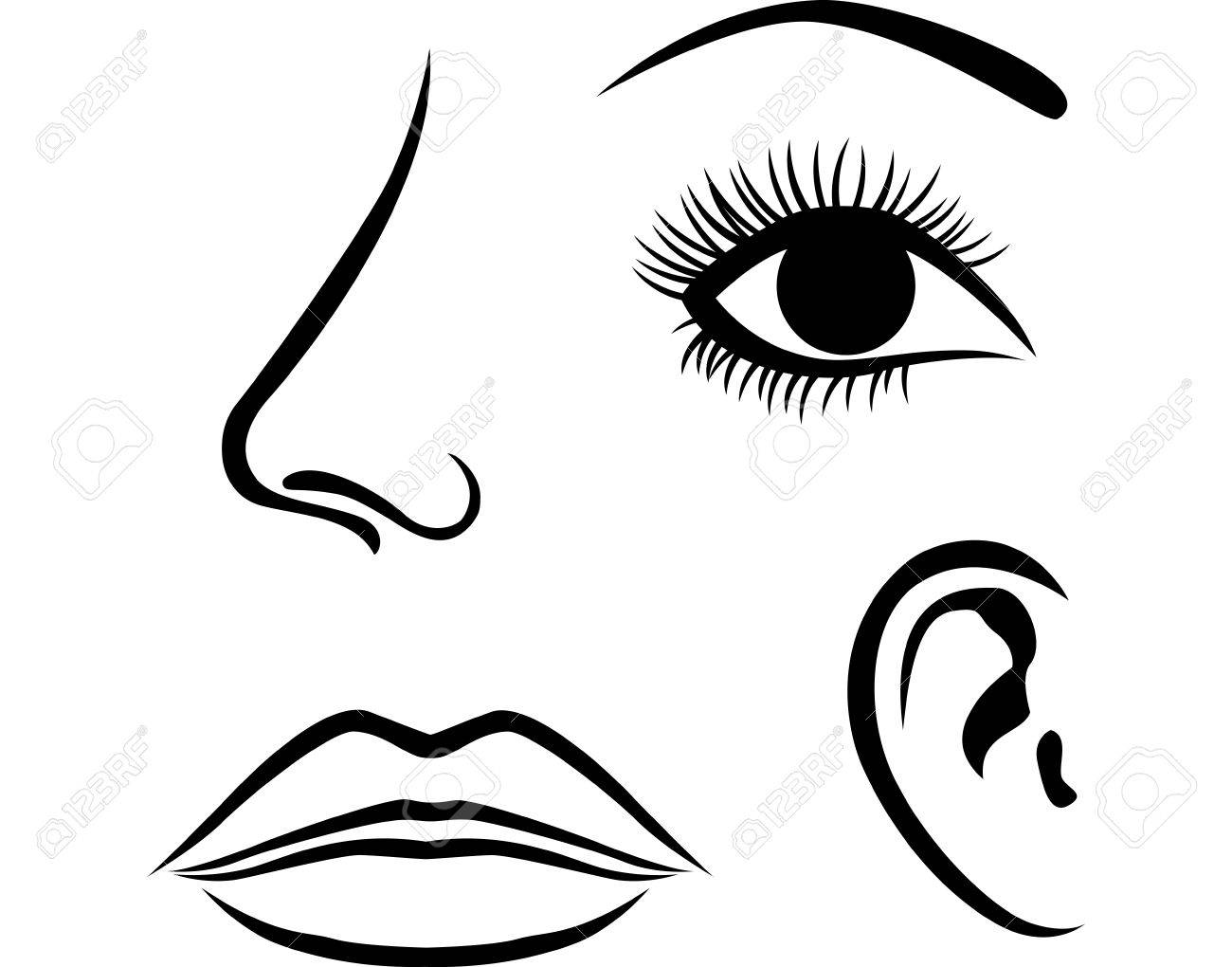 eyes nose lips and ear icon royalty free cliparts vectors and rh 123rf com vector eye chart vector eye silhouette