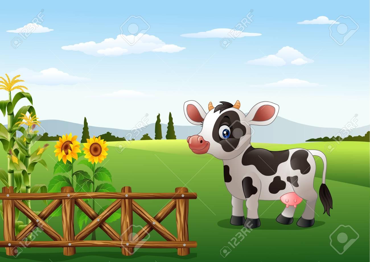 Cartoon Cow With Farm Background Stock Photo