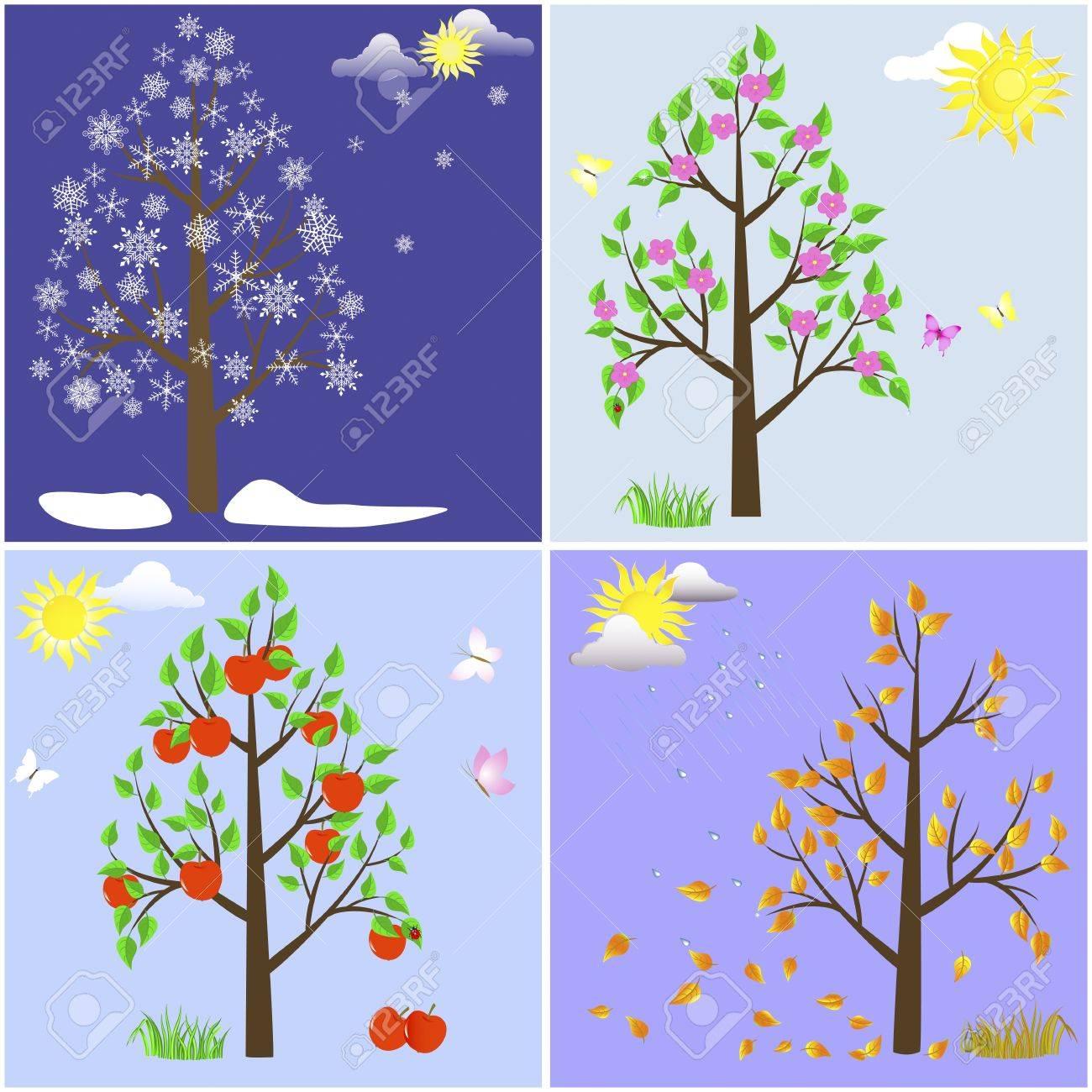 Trees in four seasons-spring, summer, autumn, winter Stock Vector - 17533561