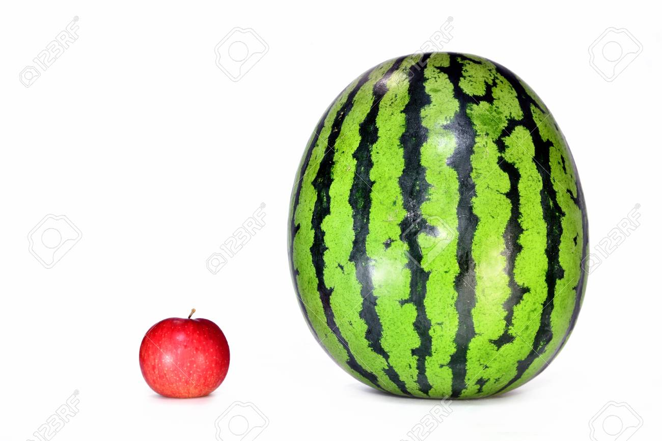 Watermelon and apples - 81222269