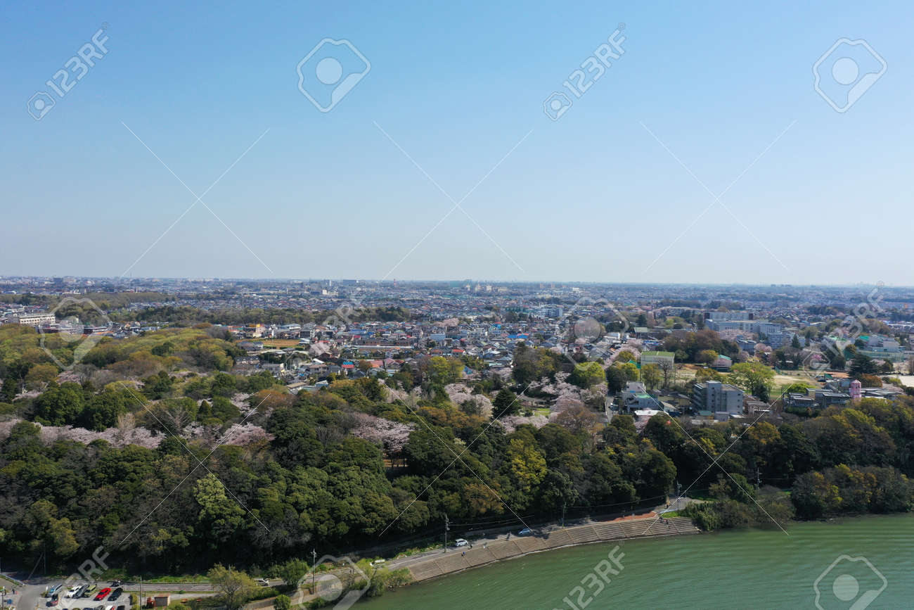 Spring Satomi Park - 167667587