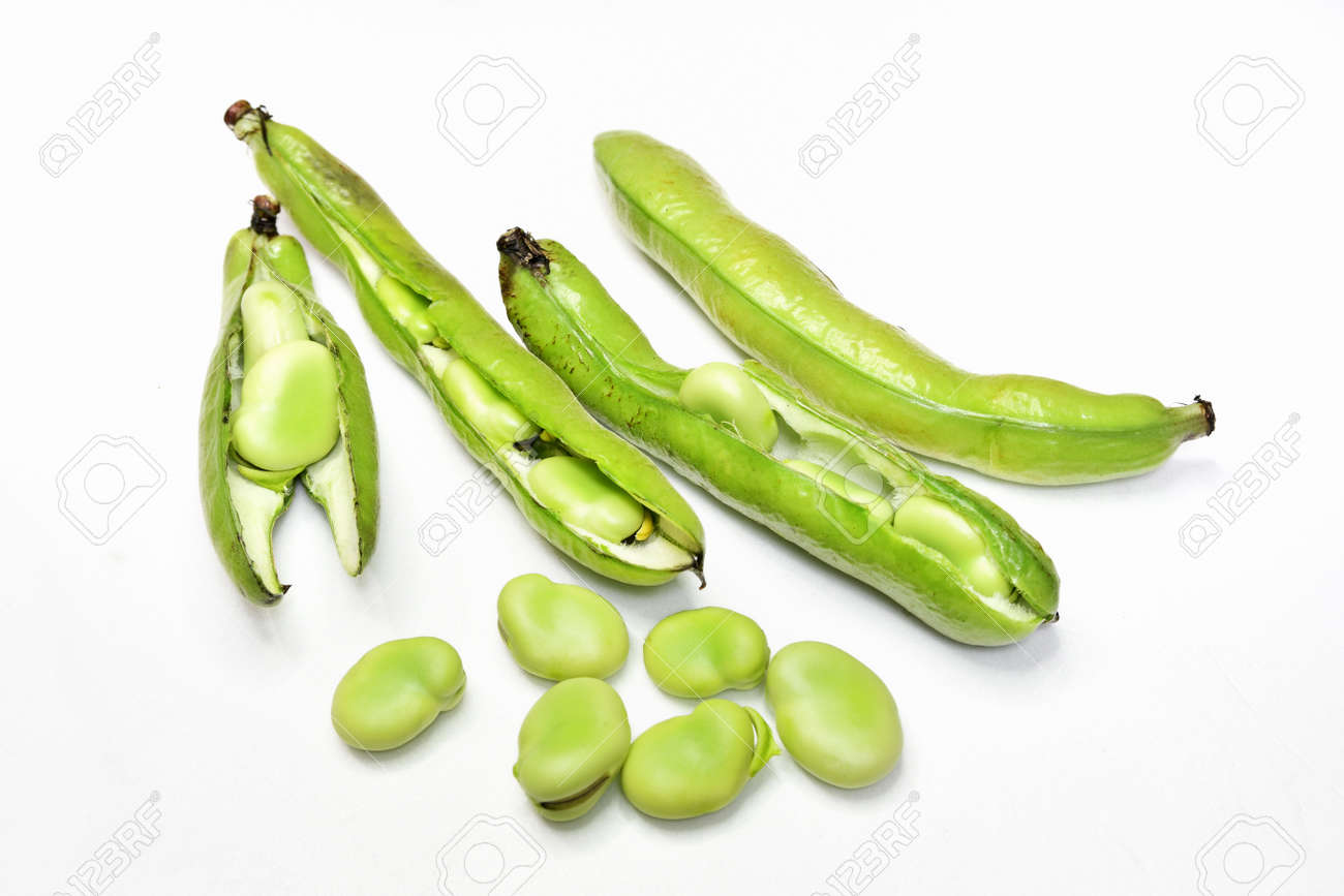 Harvested broad beans - 168229473