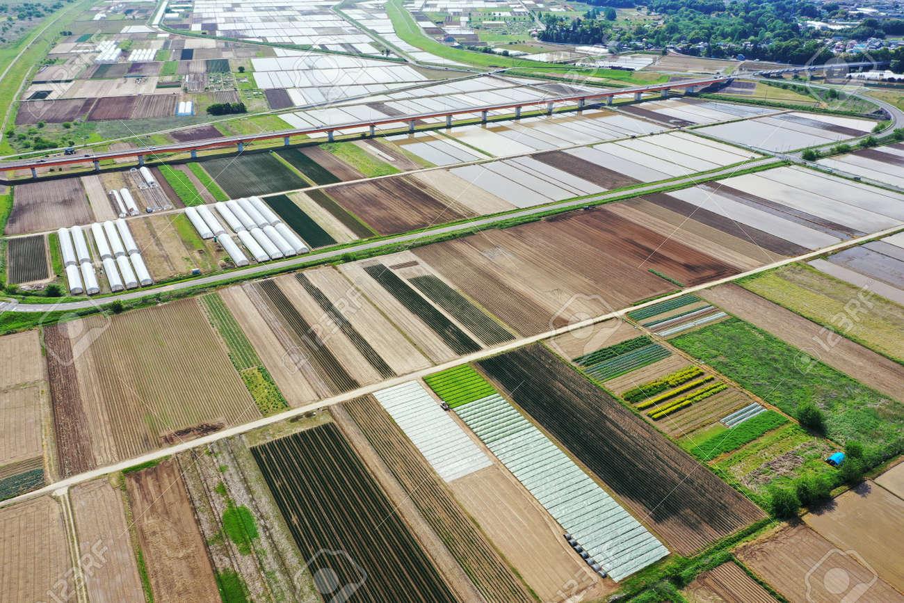 Rural scenery before rice planting - 169410063